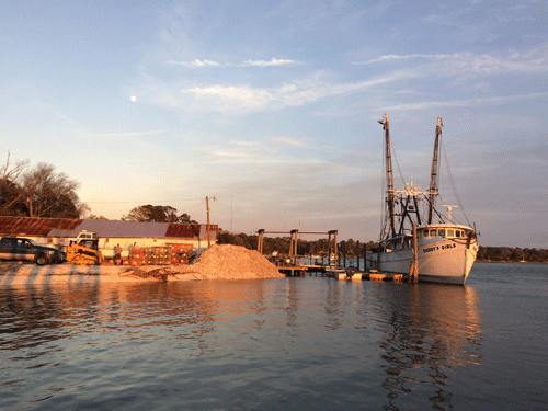 Shrimp boats at sunset