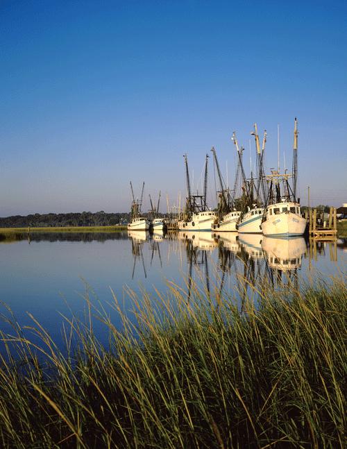 Shrimp Boats by Ed Funk