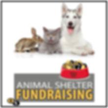 Fundraising_animal shelter_poster.jpg