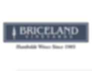 BricelandLogo.png