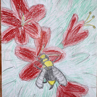 Bhima Richards 5th Grade .jpg
