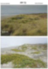 photopoint3_HCRP.jpg