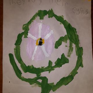 Lucian McCaffrey 1st Grade.jpg