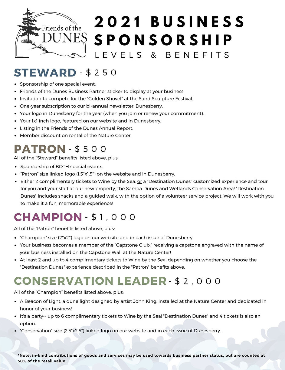 Business Partner Levels 2021.jpg