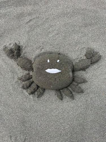 Coastal Critter Crew_Please Don't Litter