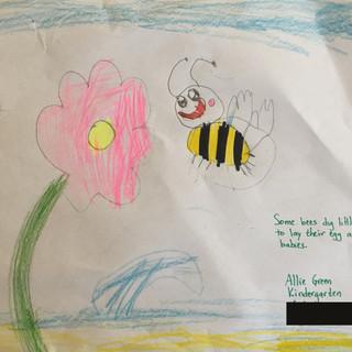 Allie Green, Kindergarten.jpg