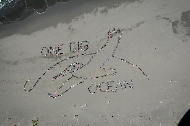 ocean day 2014.jpg