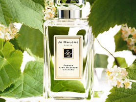 Au revoir French Lime Blossom!