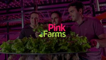 Pink Farms | PitchDeck