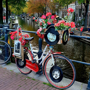 Vegan Picks Amsterdam