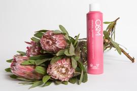 o&m botanical shoot_-6933.jpg