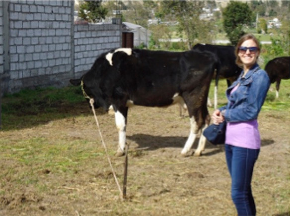 Alee And A Cow