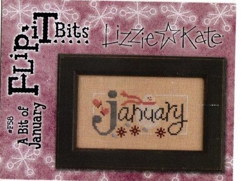 Flip It Bits (A Bit of January) - Lizzie Kate