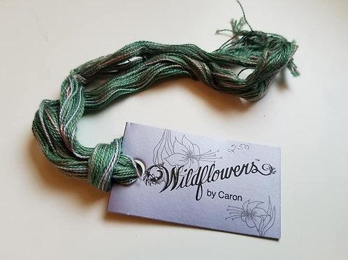 Meadow - Wildflowers