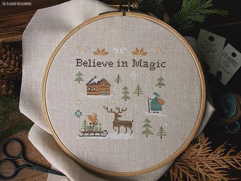 Believe In Magic - PDF