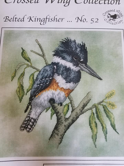 Belted Kingfisher - Crossed Wing Collection