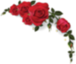 JR_roses_top_2.png