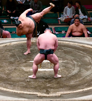 sumo 2.jpg