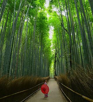 Arashiyama and Sagano.jpg