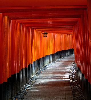 kyoto-torii gate.jpg