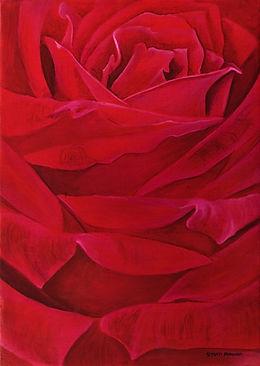 Red+Velvet+Petals.jpg
