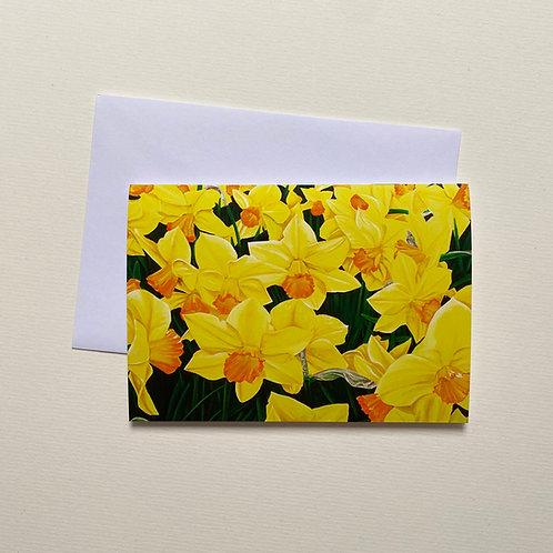 Daffodils / Greeting Card