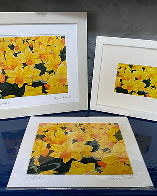 daffodilsforwebx3.jpg