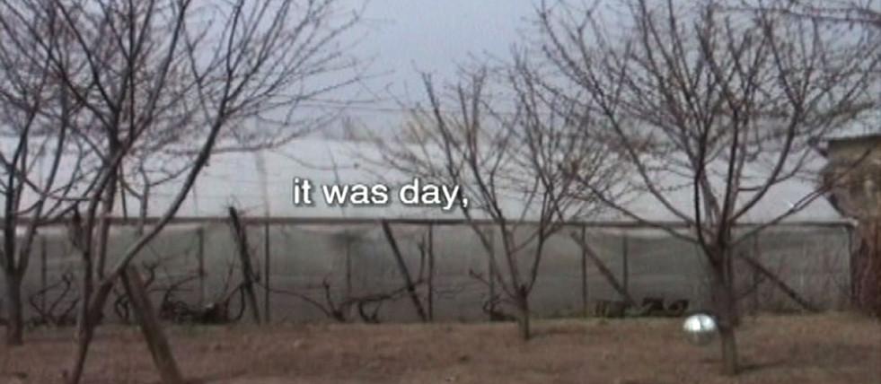 NIce Day, 2005