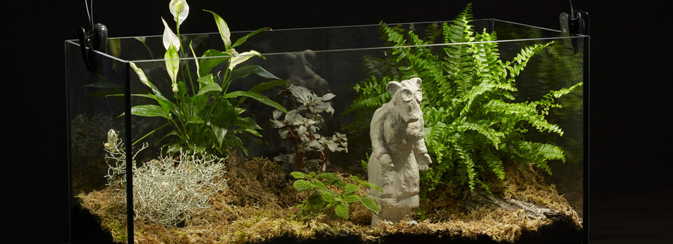 Monument to the Unknown Nurse/Garden Gnome I