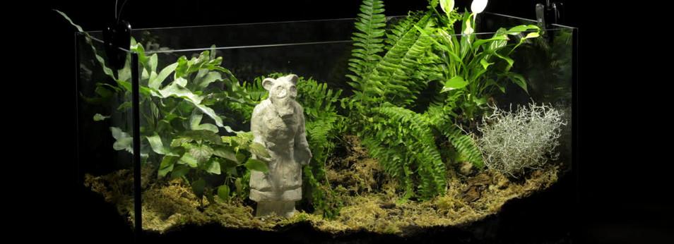 Monument to the Unknown Nurse/Garden Gnome III