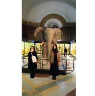 Central Africa Museum Tervuren, 2012