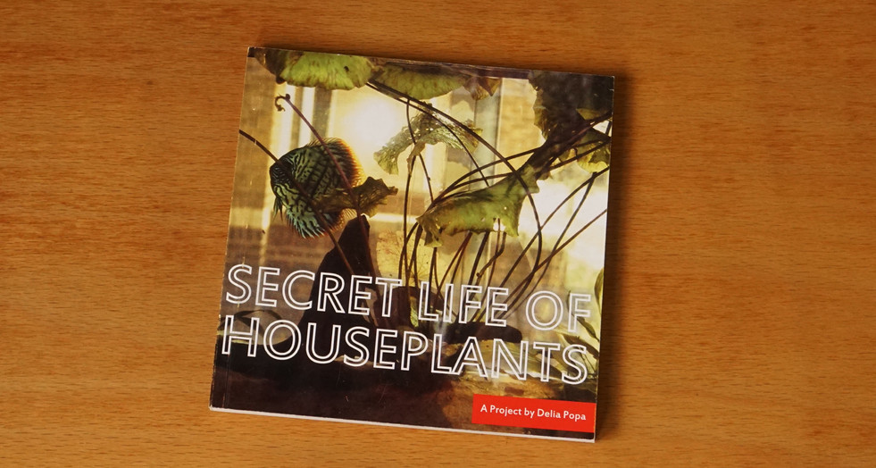 Secret Life of Houseplants, 2009