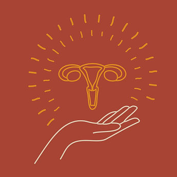 Utérus.jpg