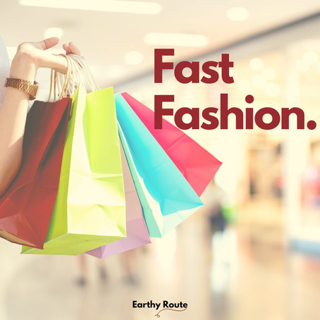 FAST FASHION  - The elephant in our closet