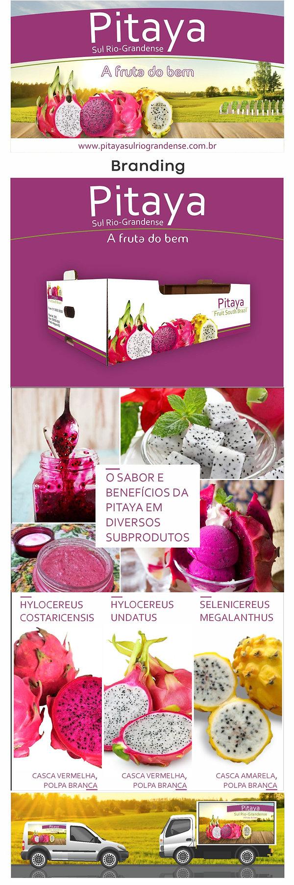Pitaya - portfolio.jpg