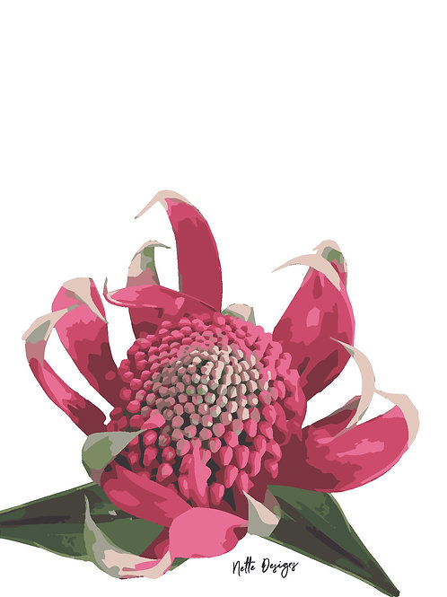 Open Waratah A6 Printed Card with gold envelope