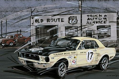 929_Mustang #17 Terlingua Racing Team 1967_70x43cm
