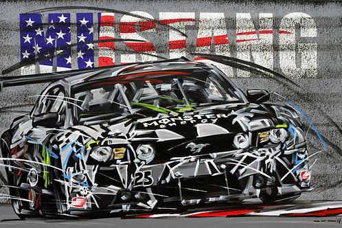 894_Mustang_EUA America's Road Racing Series_70x40cm
