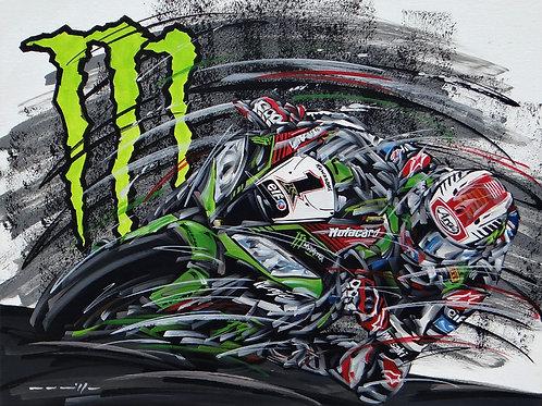 1075 Superbike Kawasaki #1 Jonathan Rea