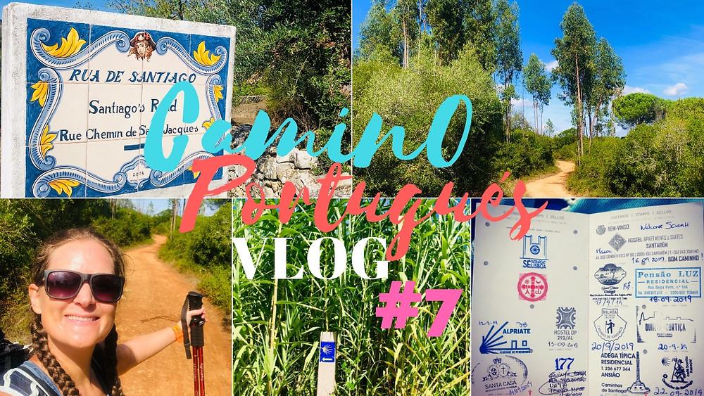 #7 From Ansião - Rabacal - Cernache (Day 11 & 12 - Camino Portugués)