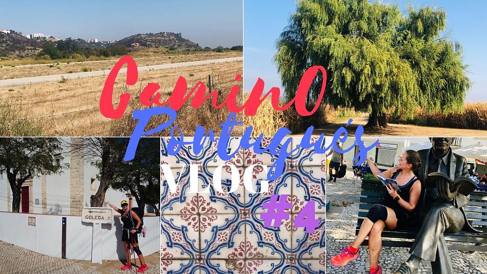 #4 Reachng Santarém early & visiting the horse capital of Portugal - Golegã