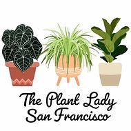 The Plant Lady SF.jpg