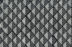 115 163-Zebra