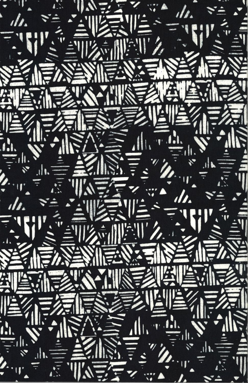 114 163-Zebra