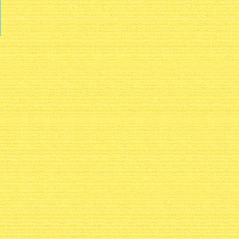 100_124_Lemon