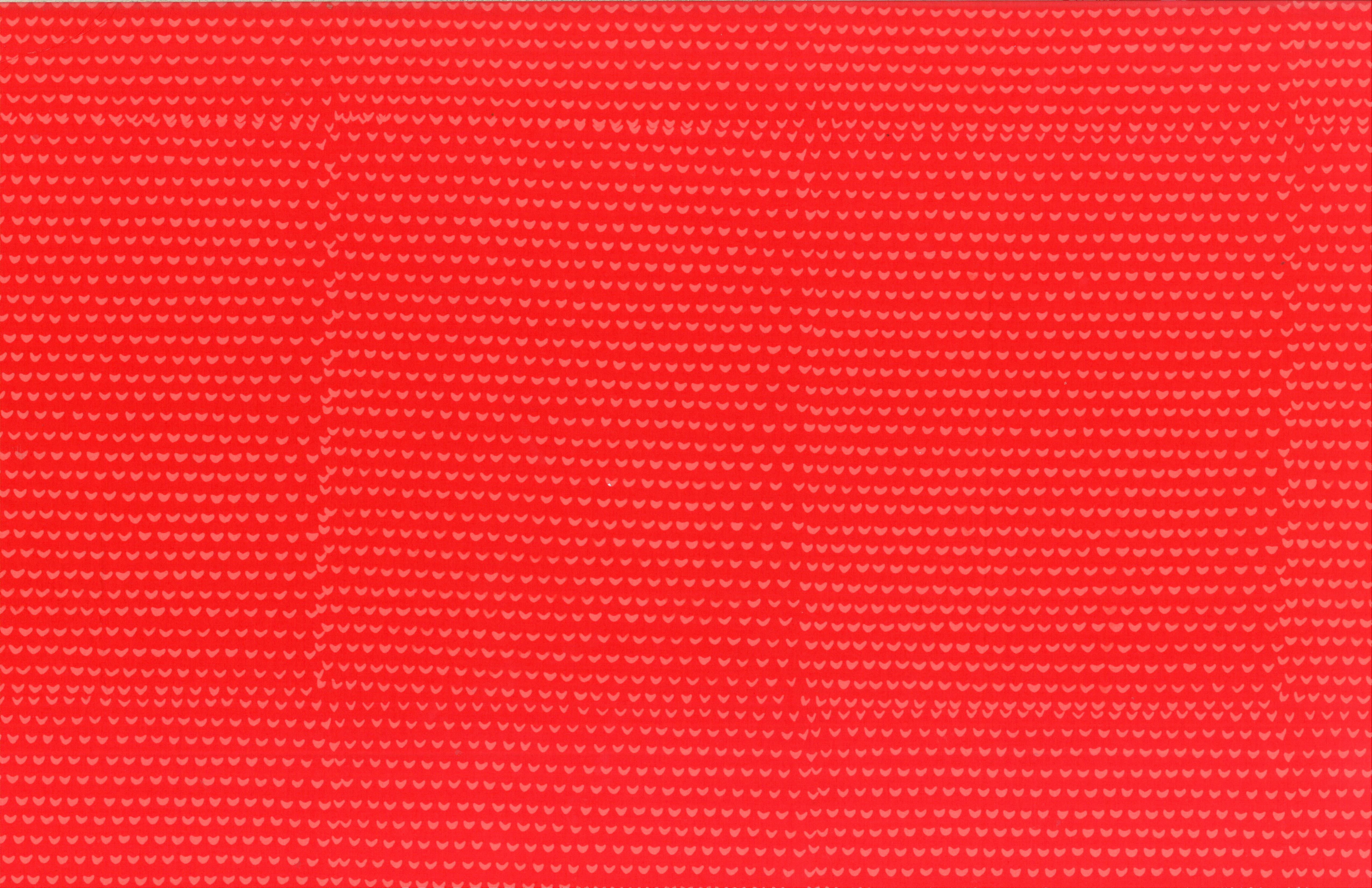 102 344-Tomato.jpg