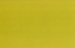 100-499-Chartreuse.jpg