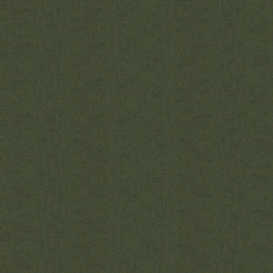 100_166_Evergreen