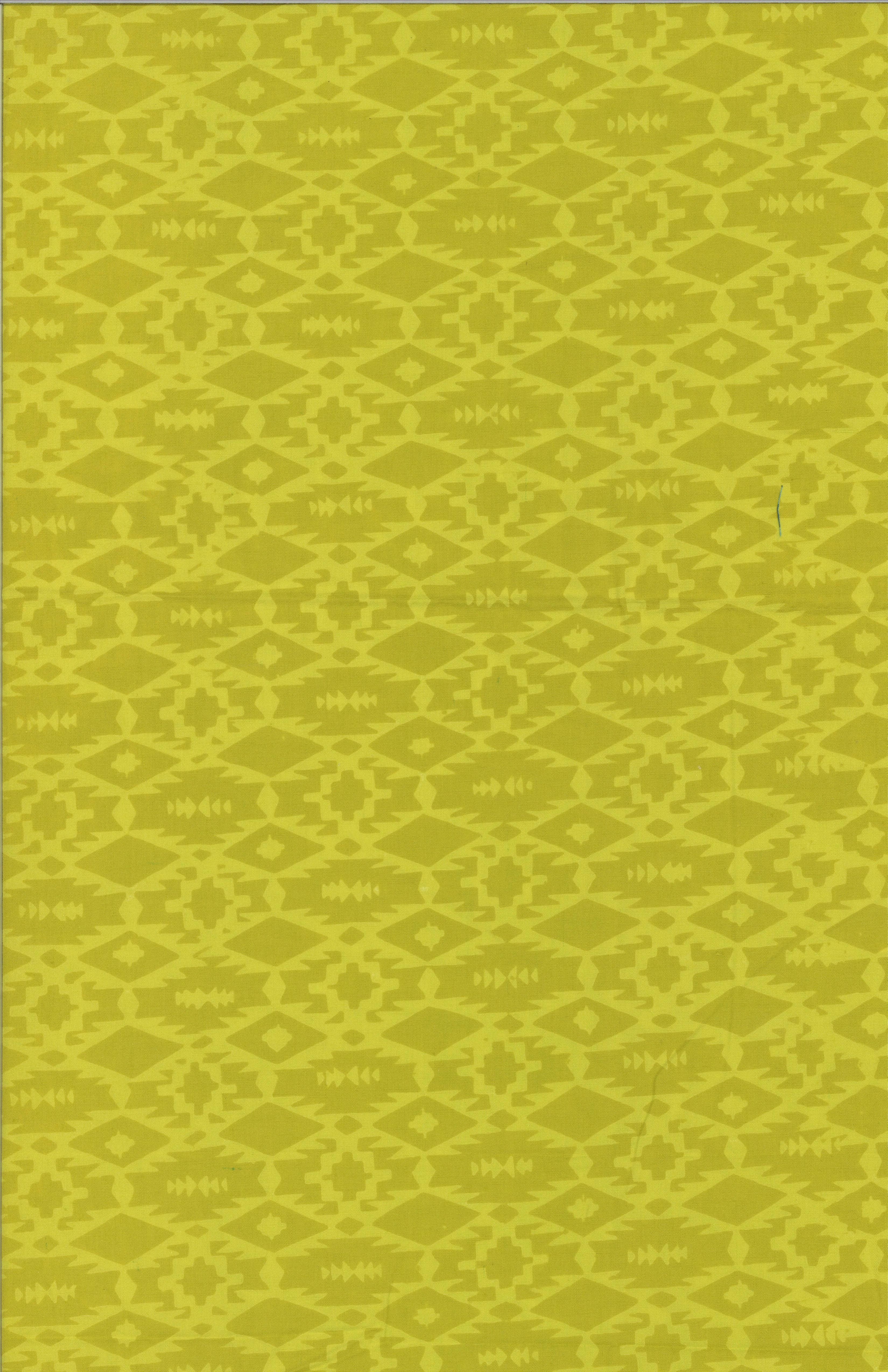 121_496_Pineapple