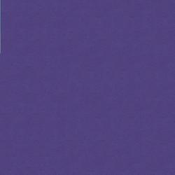100_14_Purple